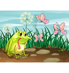 A frog and the three butterflies vector image