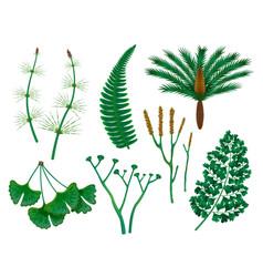 aboriginal plants realistic set vector image
