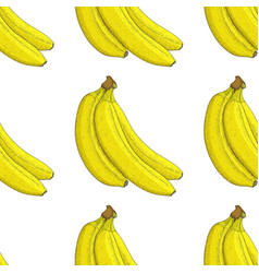 banana hand drawn colored sketch as seamless vector image