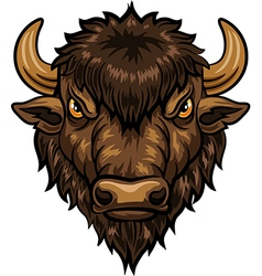 Cartoon of head bison mascot vector