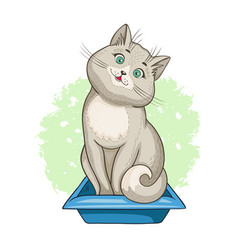 Cat that sits in a cat litter tray vector
