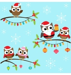 Christmas owls on branches vector