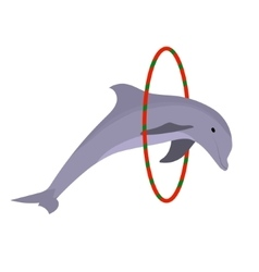 dolphin jumping through a ring cartoon flat vector image