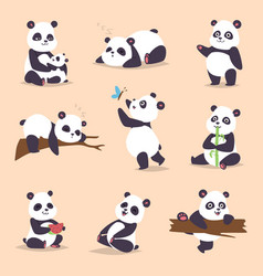 Panda cartoon character in various expression vector