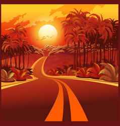 road through the jungle at sunset vector image