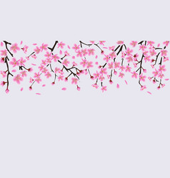 Upper frame border with blooming cherry or sakura vector