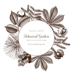 Vintage frame with botanical elements vector