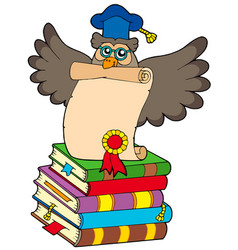 wise owl with diploma and books vector image