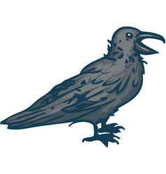 big black crow vector image