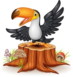 Cartoon funny toucan on tree stump vector image