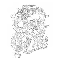 Dragon coloring book for adults vector image