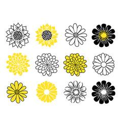 Flower head icon set daisy sunflower and vector