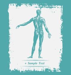 Paper art Human Body vector