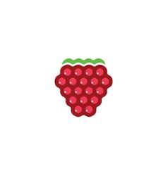 Raspberry logo icon design symbol vector