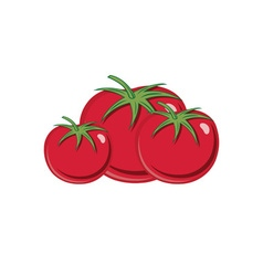 Red ripe tomatoes isolated on white background vector
