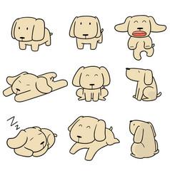set of dog labrador retriever vector image