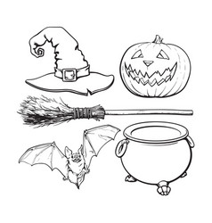 witch halloween accessories - hat caldron jack vector image