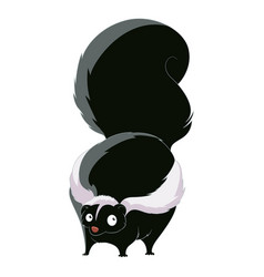 cartoon fat skunk vector image