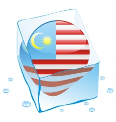 Malaysia flag vector image vector image