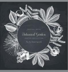 vintage frame with botanical elements vector image vector image