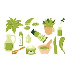 Aloe vera cosmetic beauty skincare juice vector