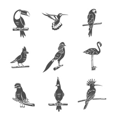 Bird Black Icons Set vector
