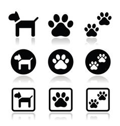Dog paw prints icons set vector image