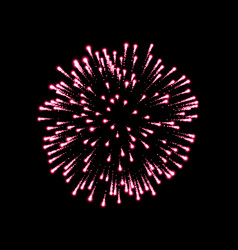 firework pink bursting isolated black background vector image