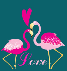 love birds flamingos vector image