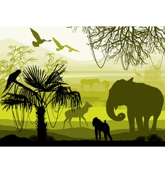 Nature with wild animals elephant monkey antelope vector