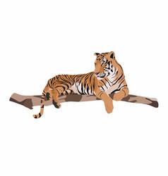 Tiger animal on a branch vector