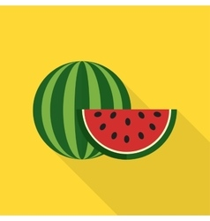 Watermelon icon vector image