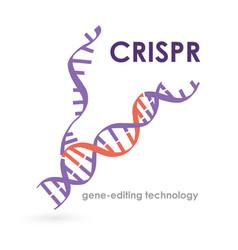 Banner inscription crispr gene-editing technology vector