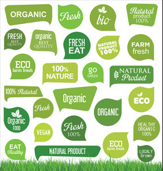 bio eco and organic modern badges and labels vector image
