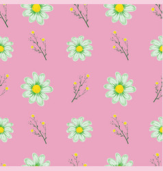 chamomile seamless pattern pink background vector image