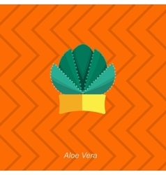 Flat of indoor homeplant aloe vector