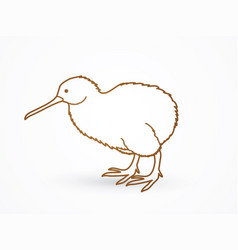 kiwi bird cartoon outline stroke graphic vector image
