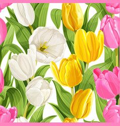 seamless pattern color tulips vector image