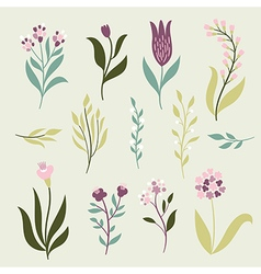 set graphic flowers vector image