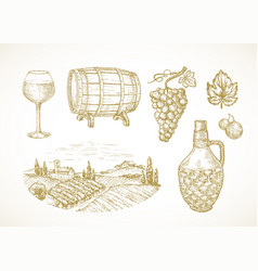 Wine or vineyard sketches set hand drawn vector