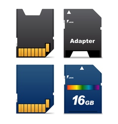 digital card and adapter vector image vector image