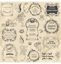 Vintage frame collection with flowers vector