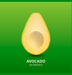 3d realistic half avocado without seed vector