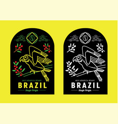Brazil coffee label design with macaw vector