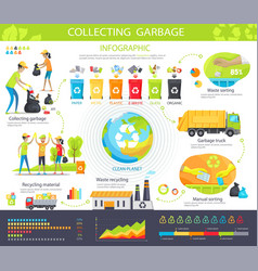 collecting garbage infographic poster with steps vector image