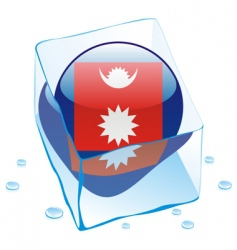 Nepal flag vector image vector image