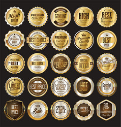 retro vintage badge and label gold and silver vector image