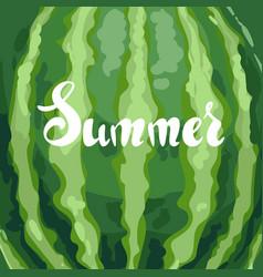 Watermelon striped texture background vector