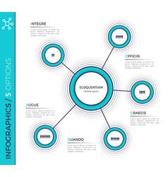 five options minimalistic creative infographic vector image