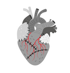 Anatomical organ heart with stitches vector
